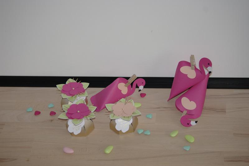 Baptême de Lou, flamants roses sous les tropiques