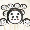 CE002 - Cartes étapes Collection panda